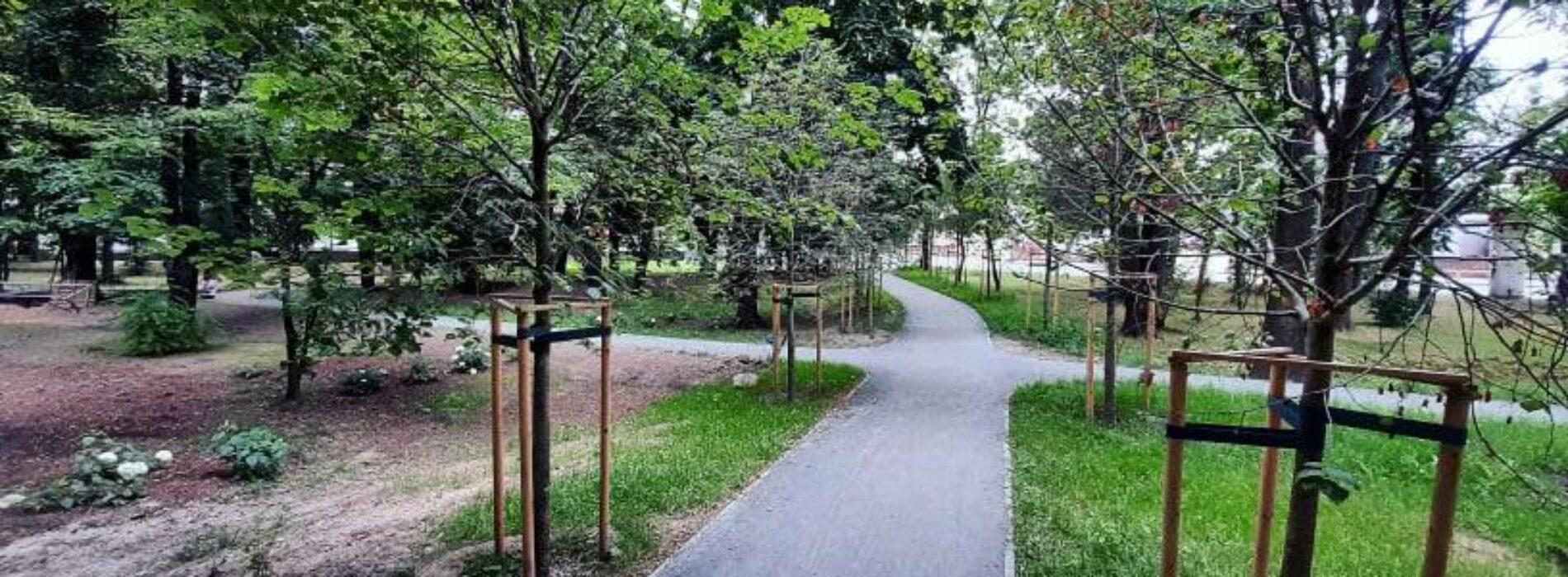 Trwa rewitalizacja Parku Młodzieżowego